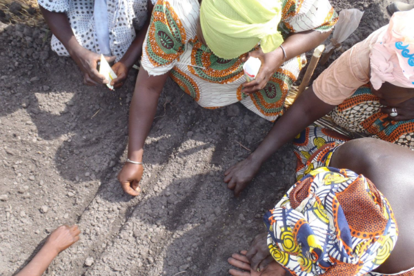 Women growers at Dar Salam Sere, demonstrating seed bed preparation as part of a farmer to farmer project in Senegal. Photo by Erin Schneider