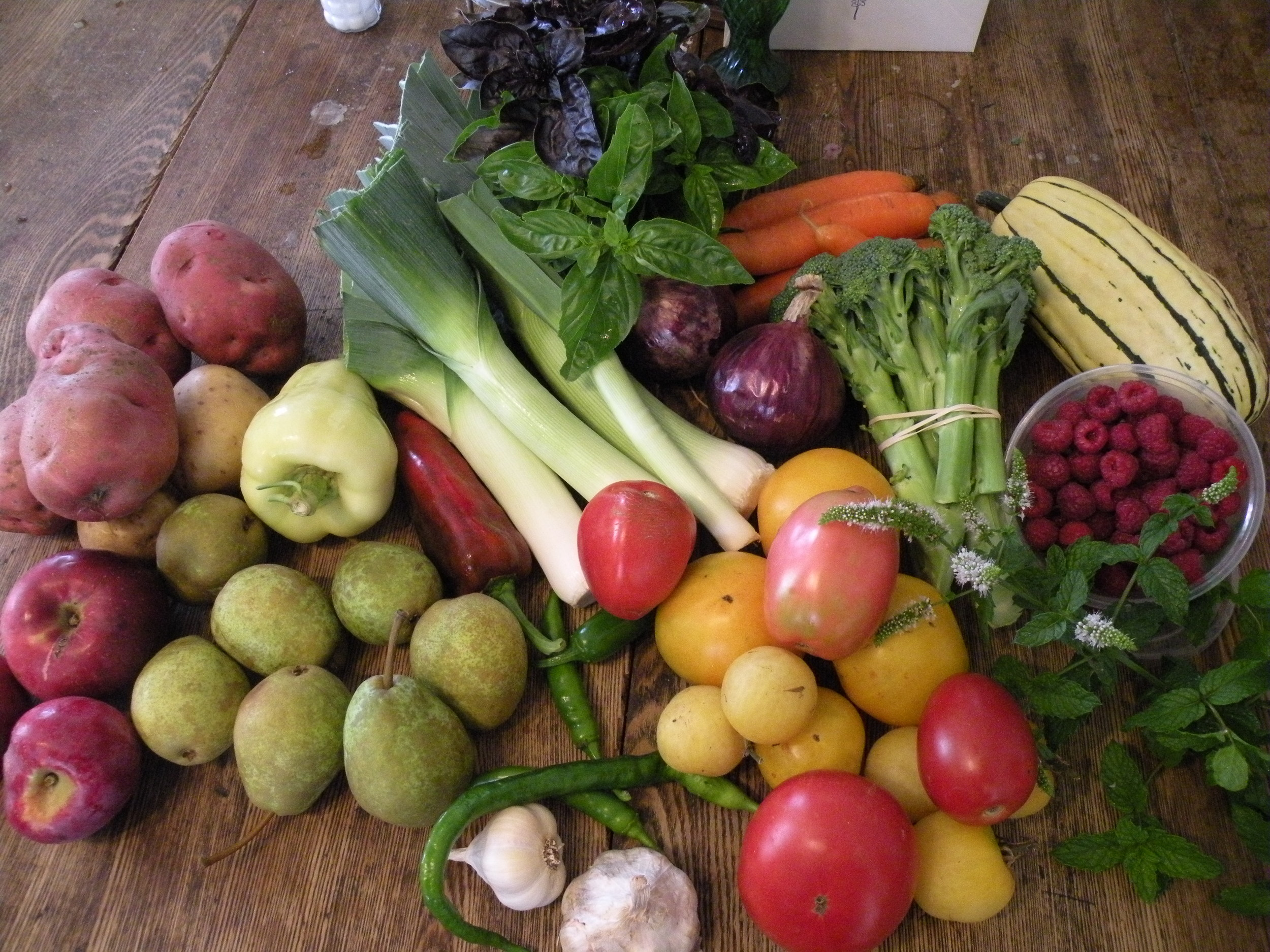 Early September CSA share