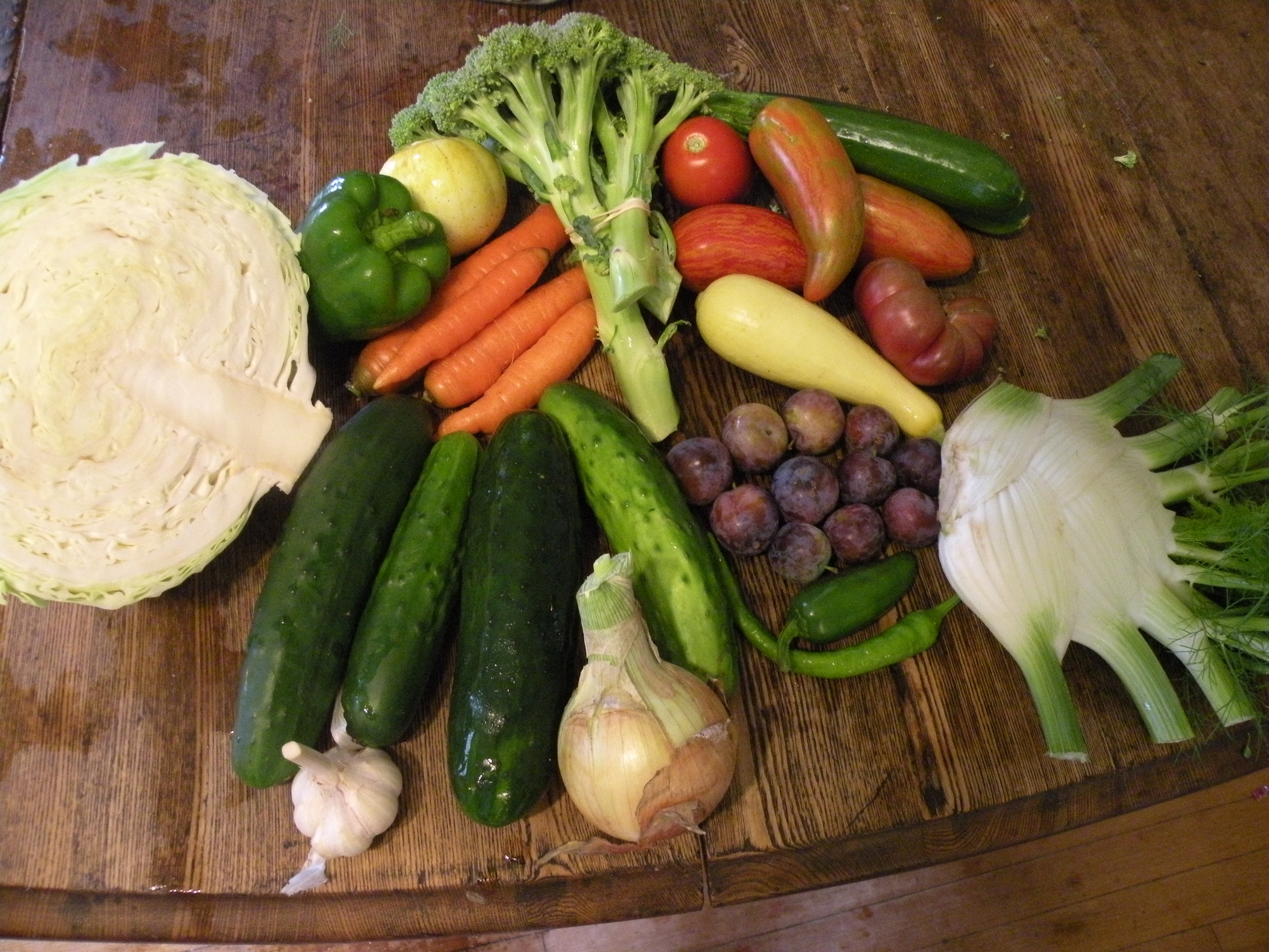 Late July CSA share