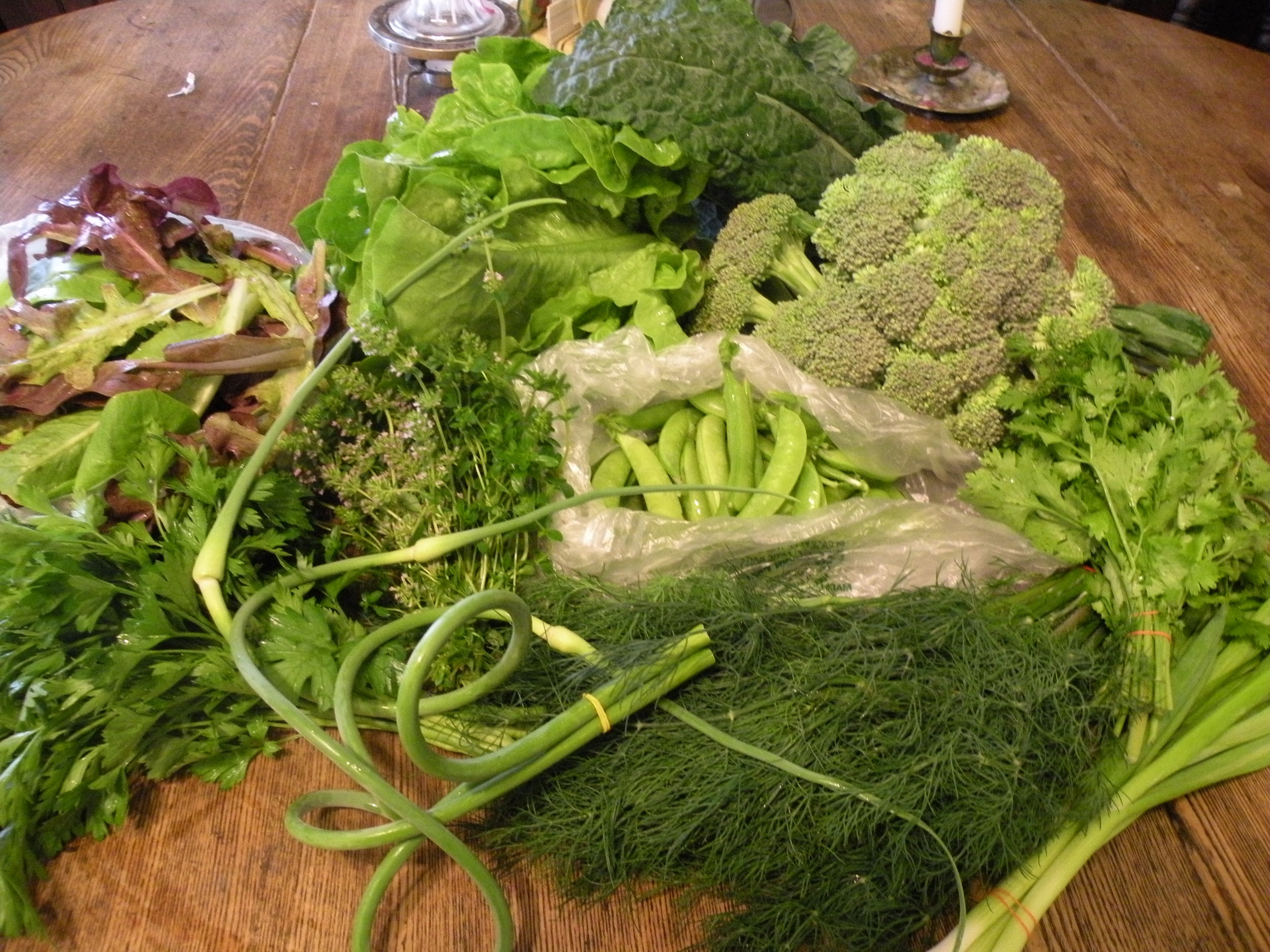 Late June CSA share