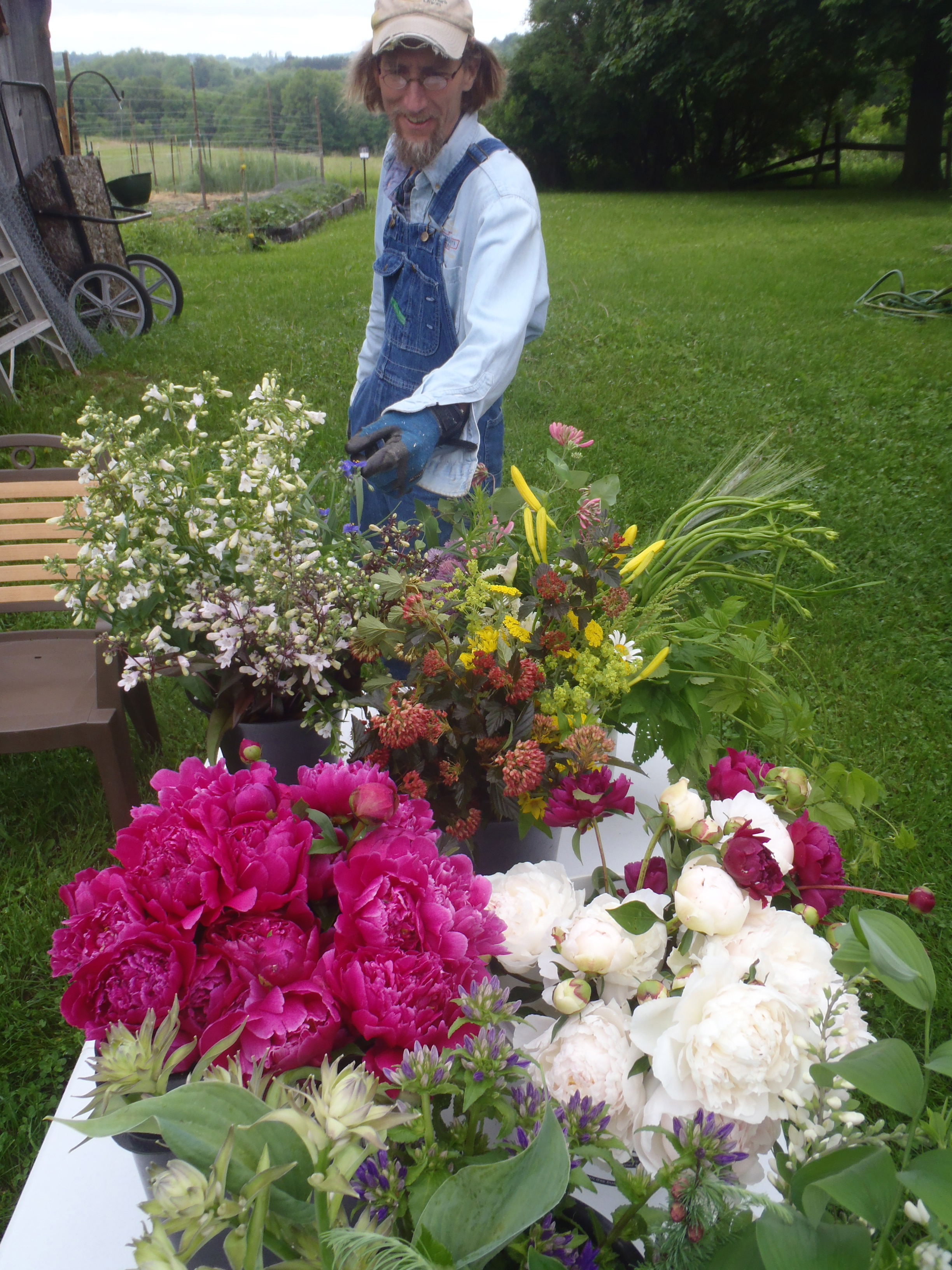 Rob inspecting a peony, June flower harvest for a wedding client. While Rob takes the lead on our vegetable CSA and I spearhead the flower operations, we've both been known to cross-pollinate and mutually support each other's terrain. Photo by Erin Schneider