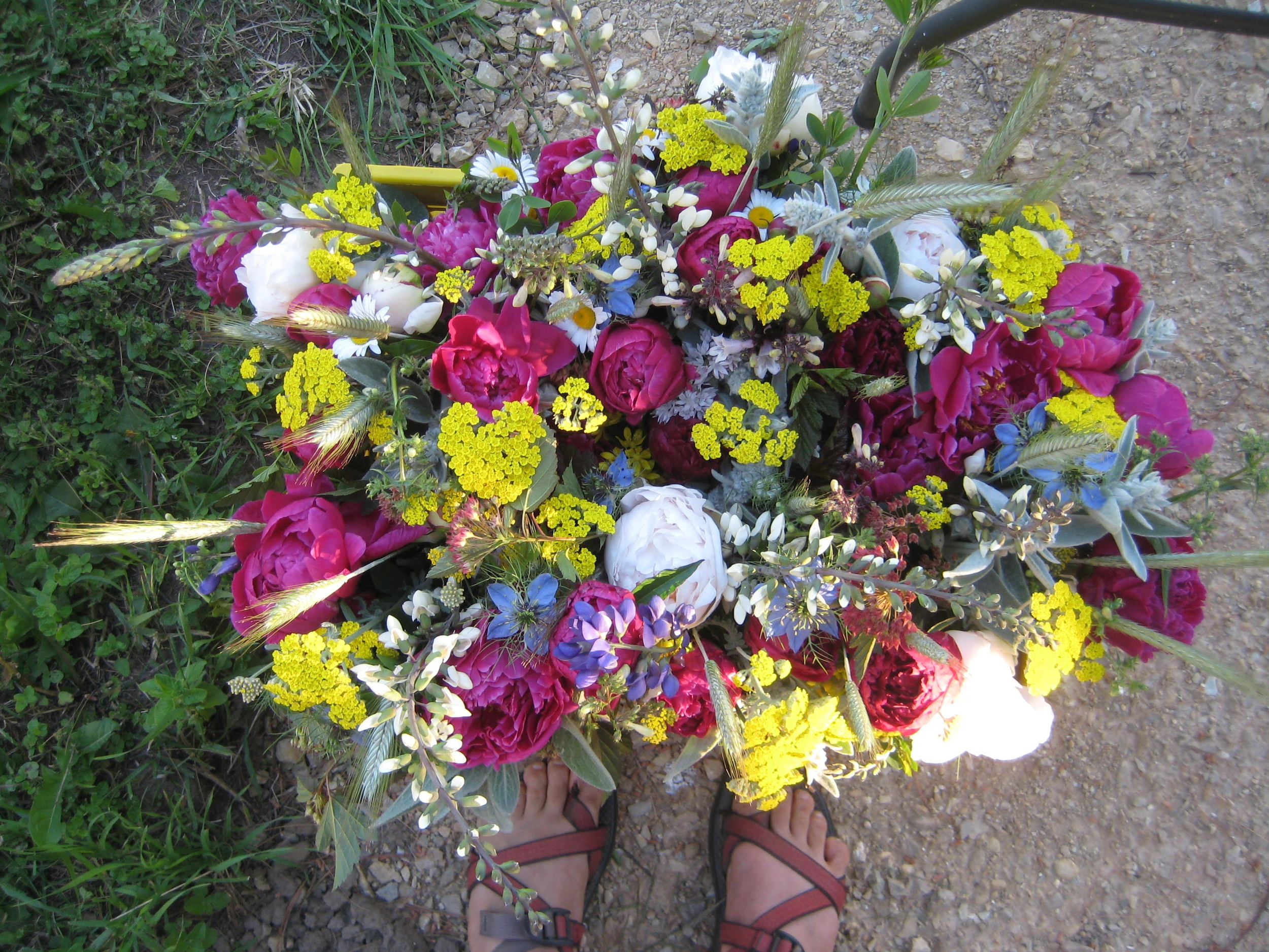 Flower CSA Bouquets June 9, 2016