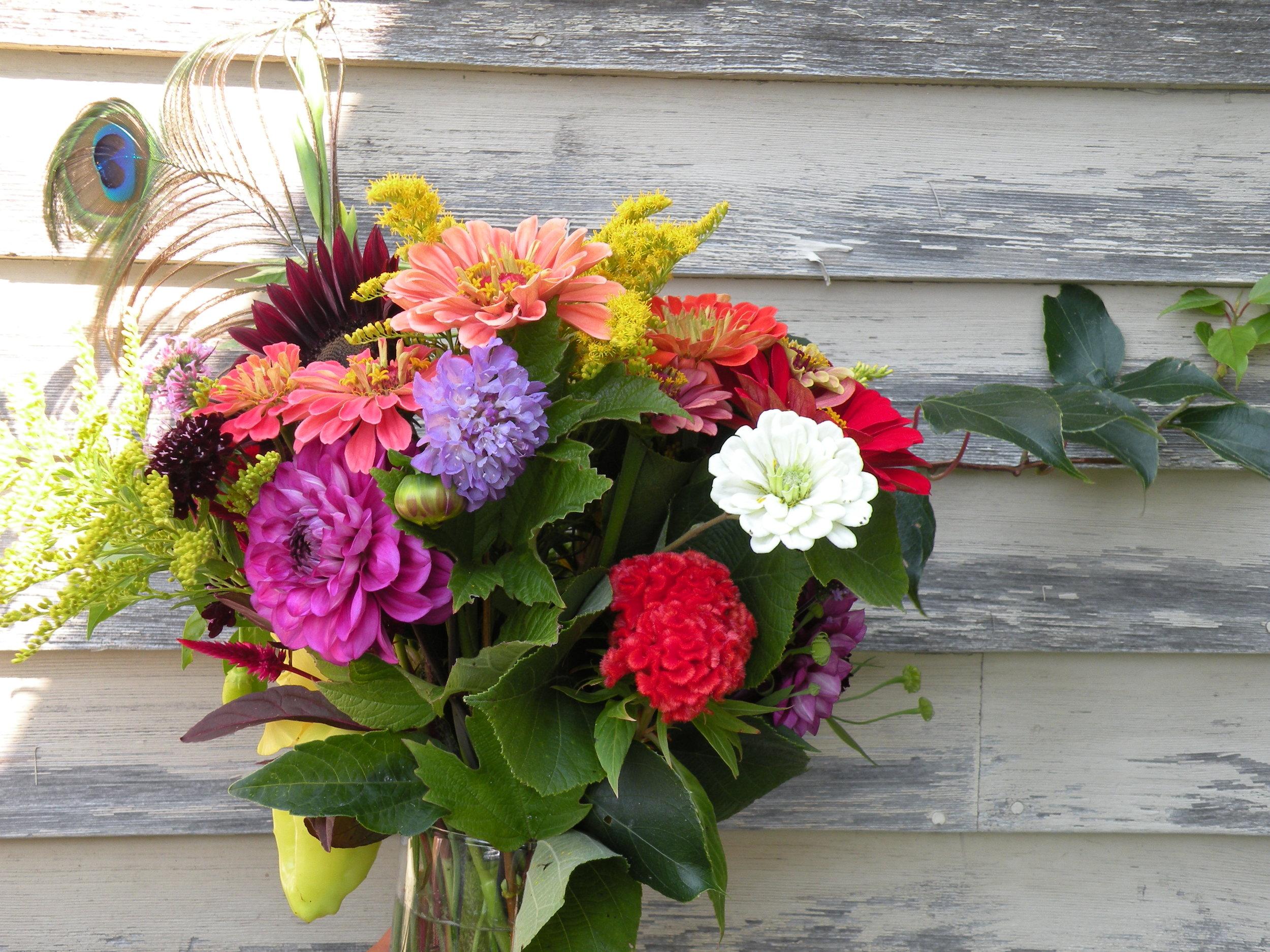 september 6 flower bouquet kiwi outliers.jpg