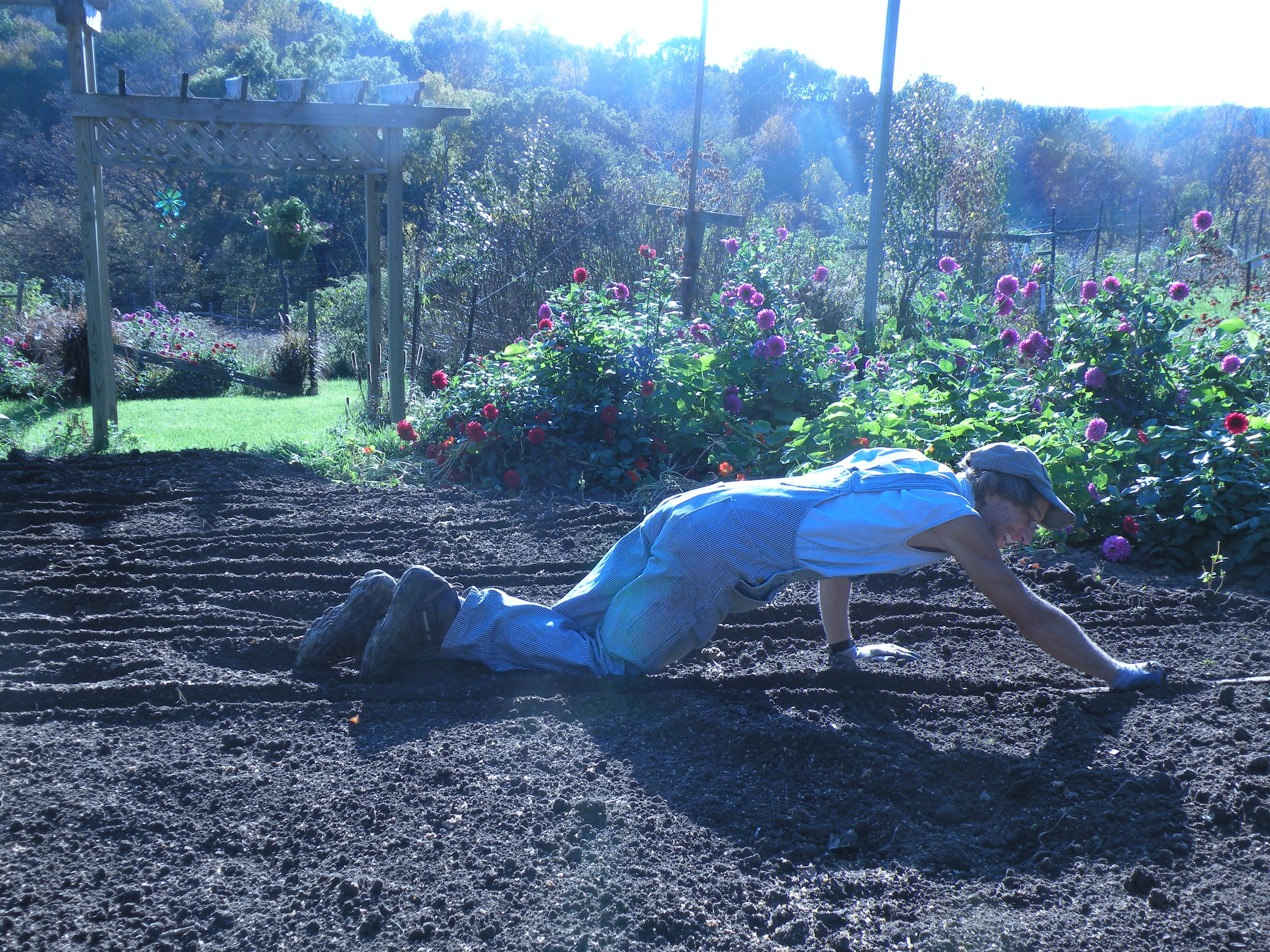Rob prepping the garlic beds.