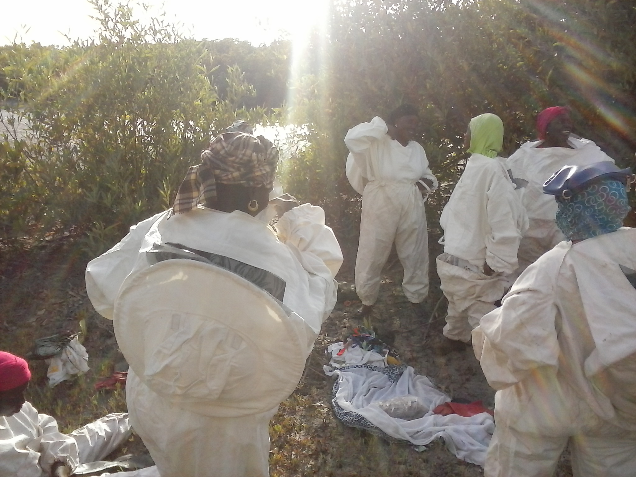 Missirah women beekeepers suiting up for hive inspections. Photo by Erin Schneider
