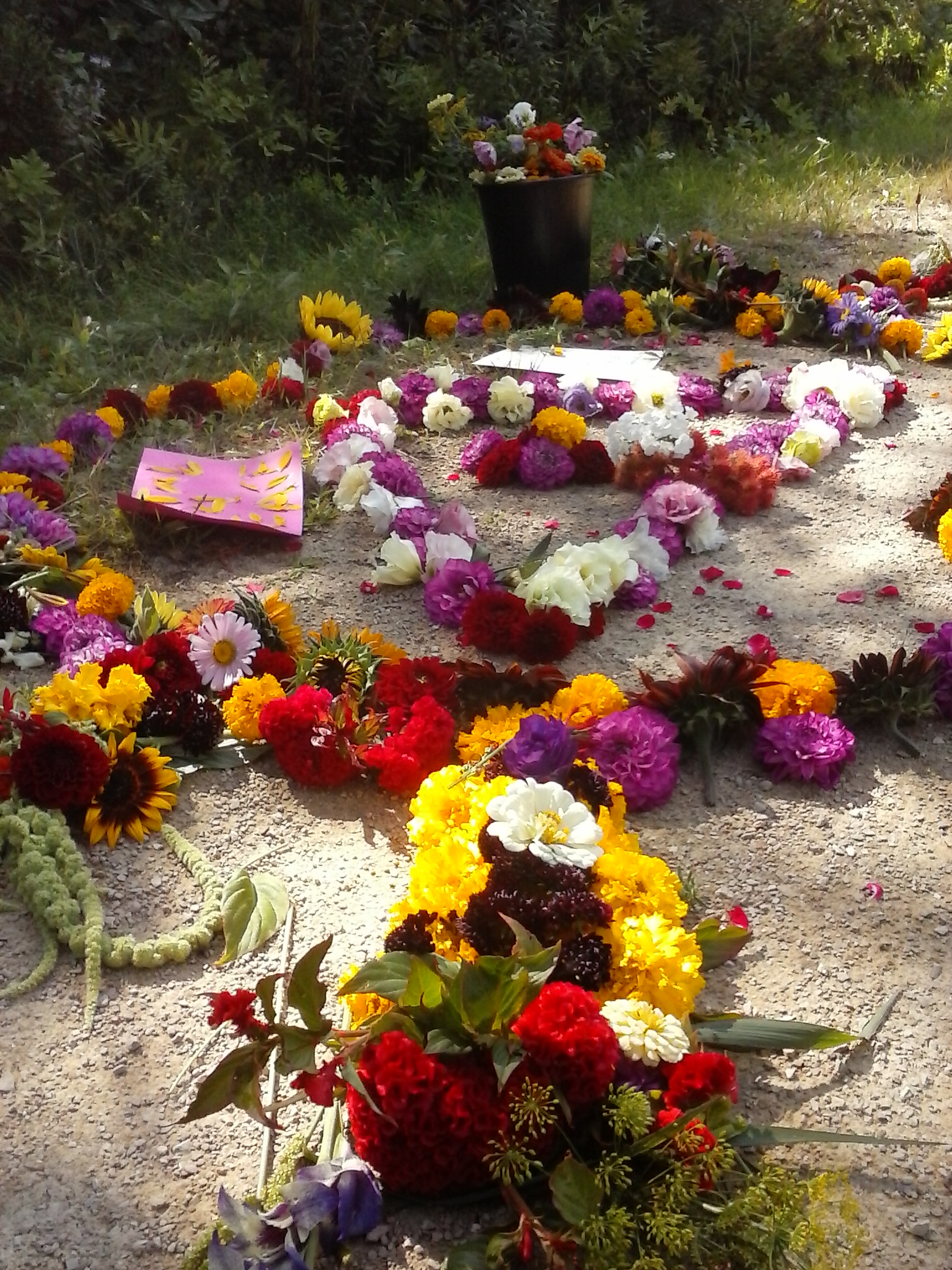 A Flower Mandala that Rob and I created along the bike path this summer. Flowers provide livelihood, love, and gratitude. We look forward to sharing this with you in the season's ahead. Photo by Erin Schneider