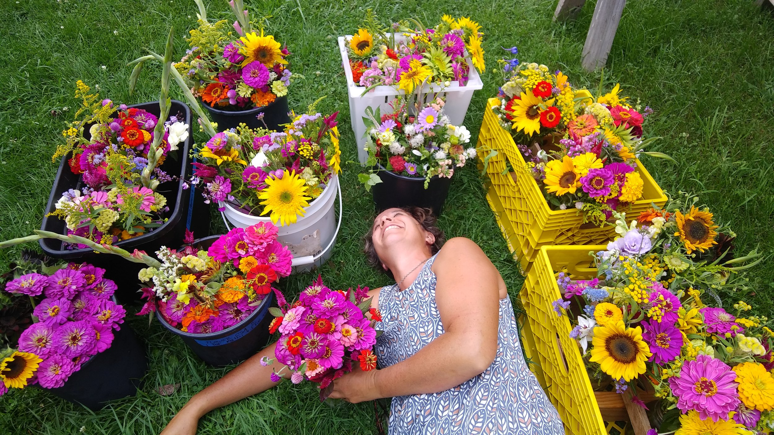 lying down amidst the zinnia bouquets. Photo by Rob McClure