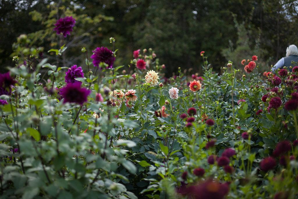 FloralWorkshop-088.jpg