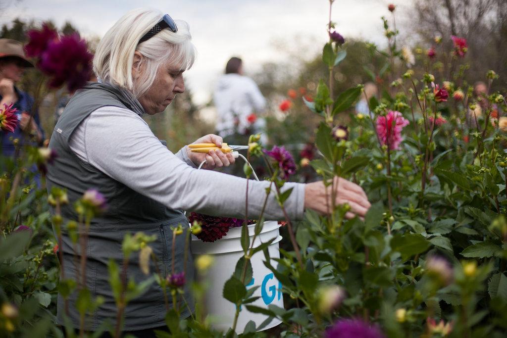 FloralWorkshop-096.jpg