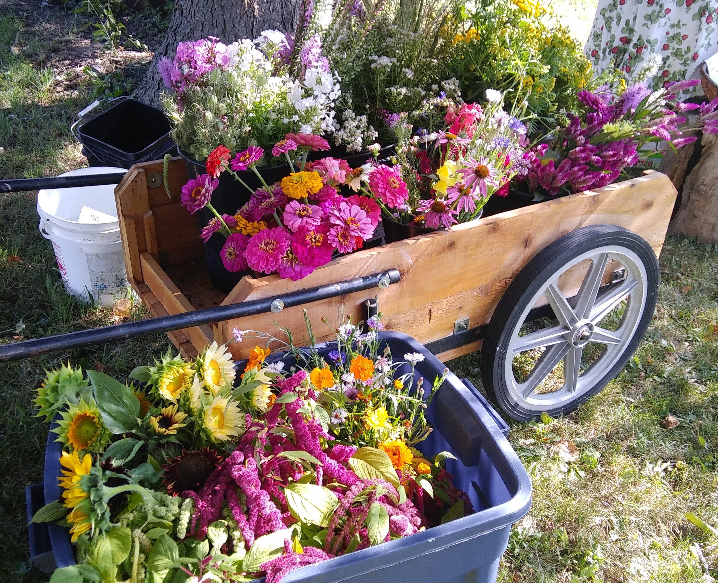 Flower Workshop palette 7-29-18.jpg