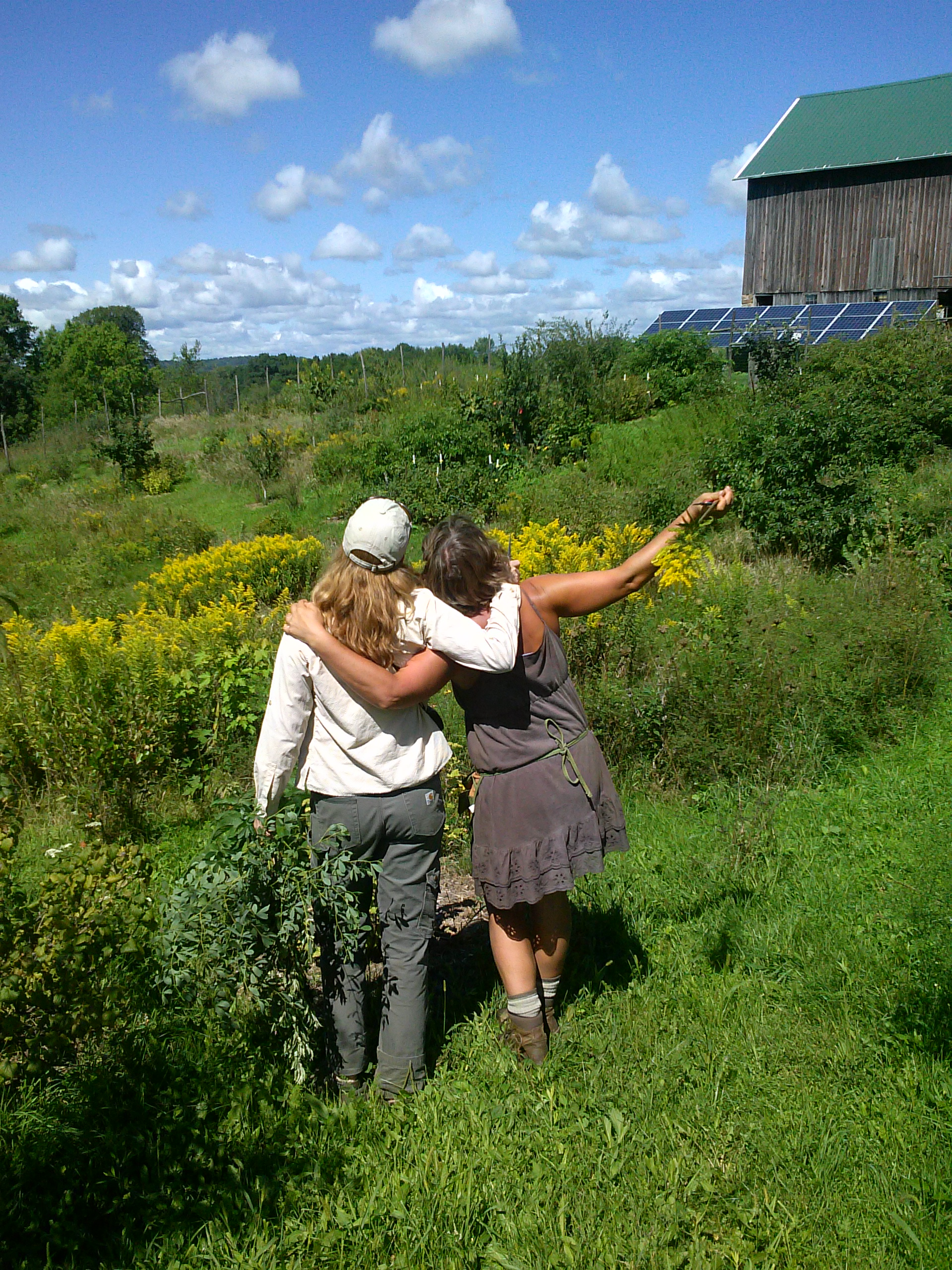 sharing the farm flower viewpoints with Kelly.jpg