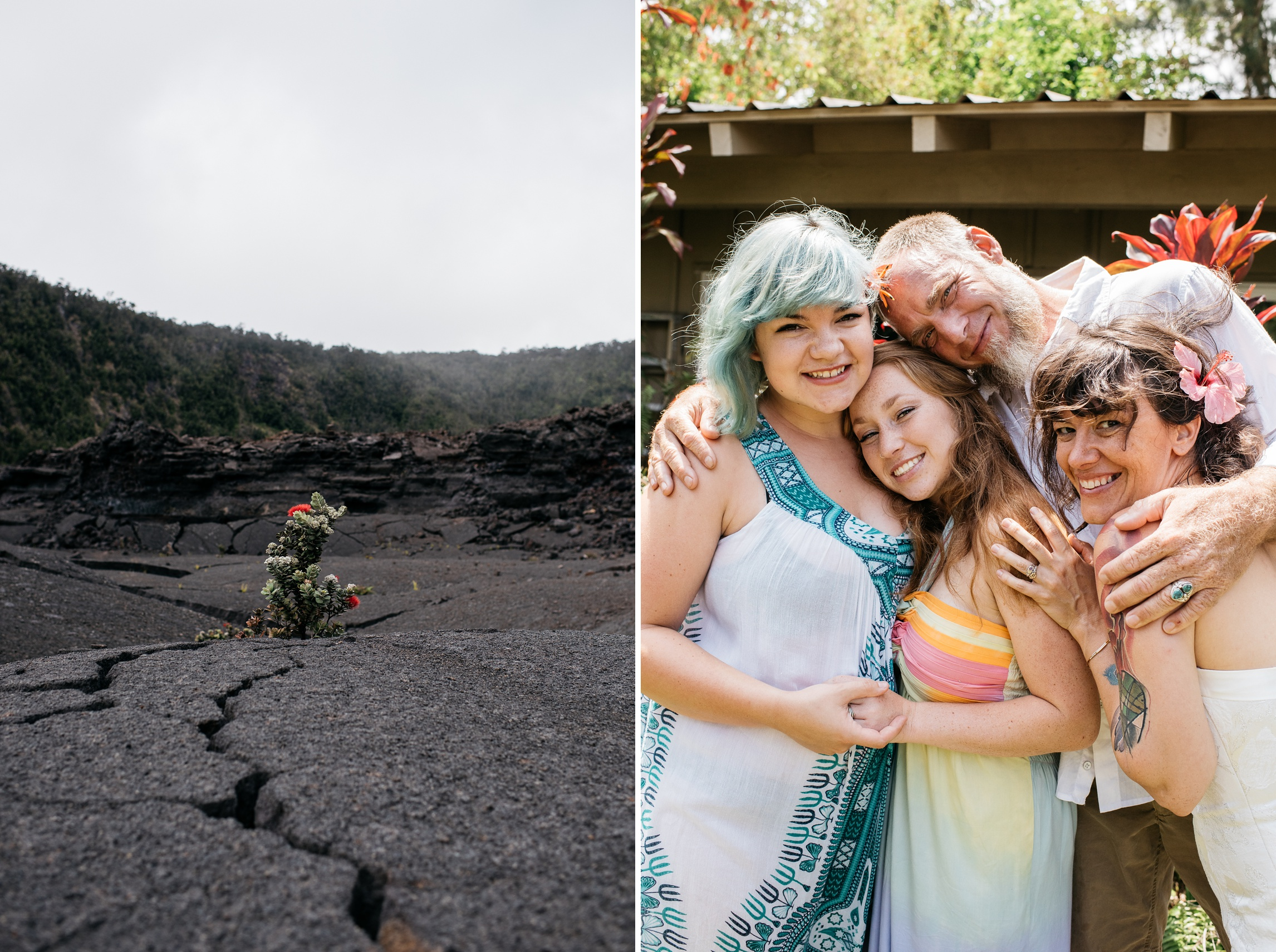 A flower grows from lava rock on the Kilauea Iki trail and family portraits done near Naalehu, Hawaii. Anniversary portraits by Sonja Salzburg of Sonja K Photography.