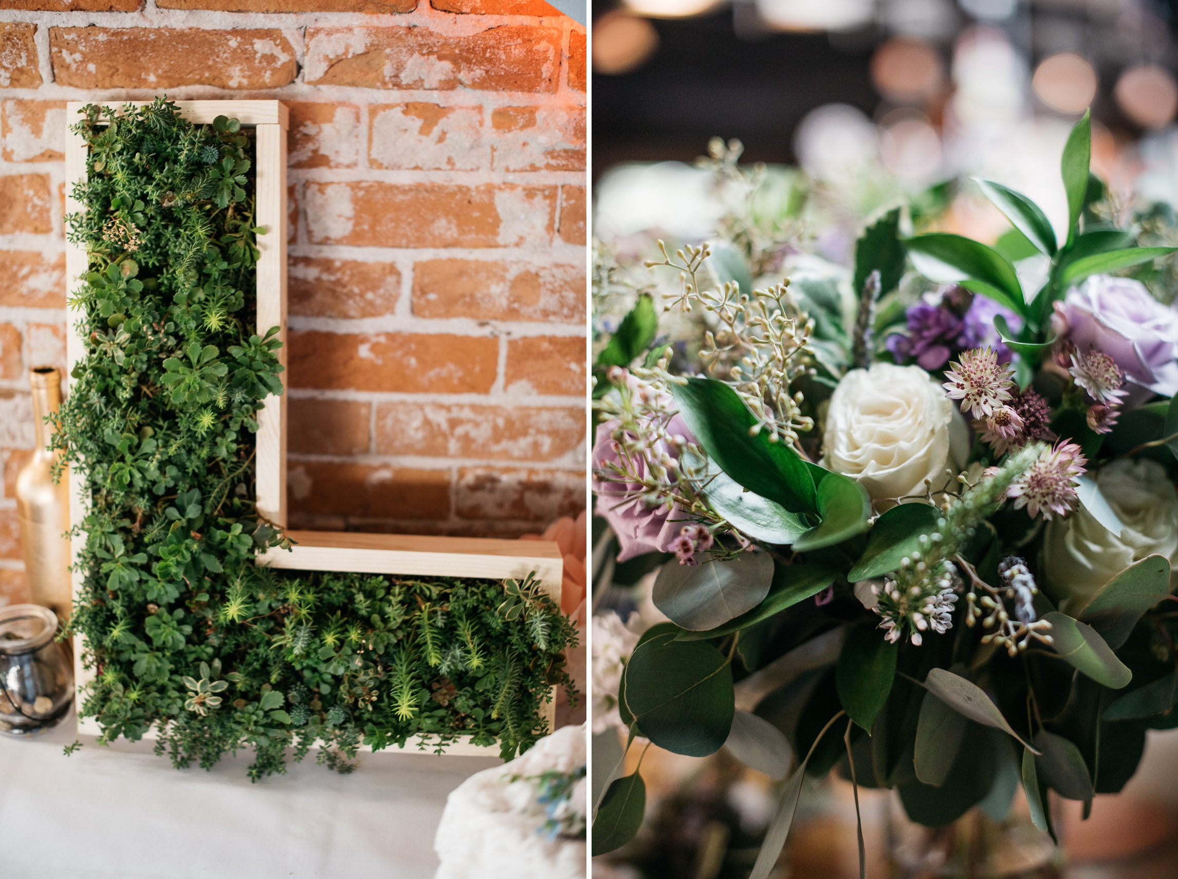 Succulents and floral arrangements at an outdoor Colorado wedding in Old Town Fort Collins. Wedding photography by Sonja Salzburg of Sonja K Photography.
