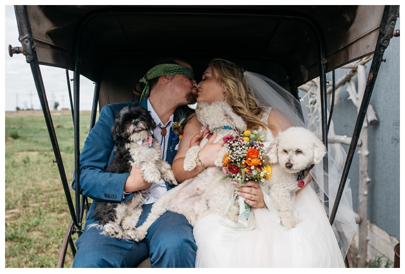 The bride and groom with their dogs on their wedding day at a Meadows Event Center near Platteville, Colorado. Wedding photography by Sonja Salzburg of Sonja K Photography.
