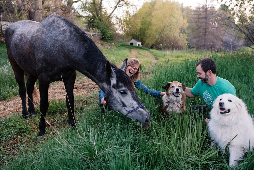 A young family in long grass at Pourde River Stables in Fort Collins, Colorado. Family portrait photography by Sonja Salzburg of Sonja K Photography.