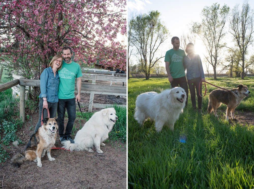 A young family with their dogs at sunset at Poudre River Stables in Fort Collins, Colorado. Family portrait and pet photography by Sonja Salzburg of Sonja K Photography.