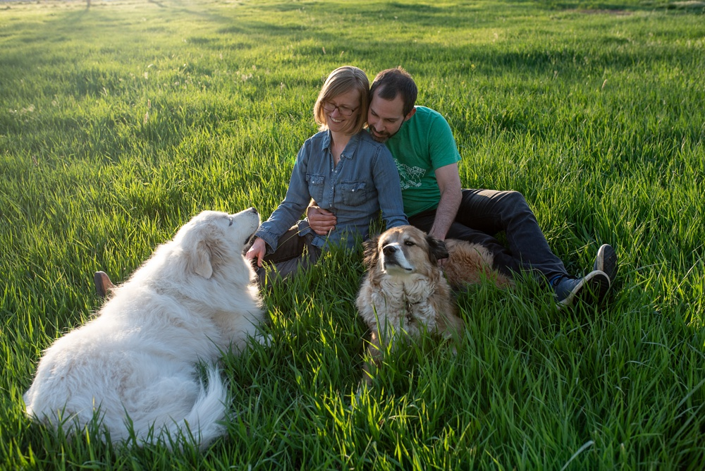 A young family at Poudre River Stables in Fort Collins, Colorado. Family and pet portrait photography by Sonja Salzburg of Sonja K Photography.