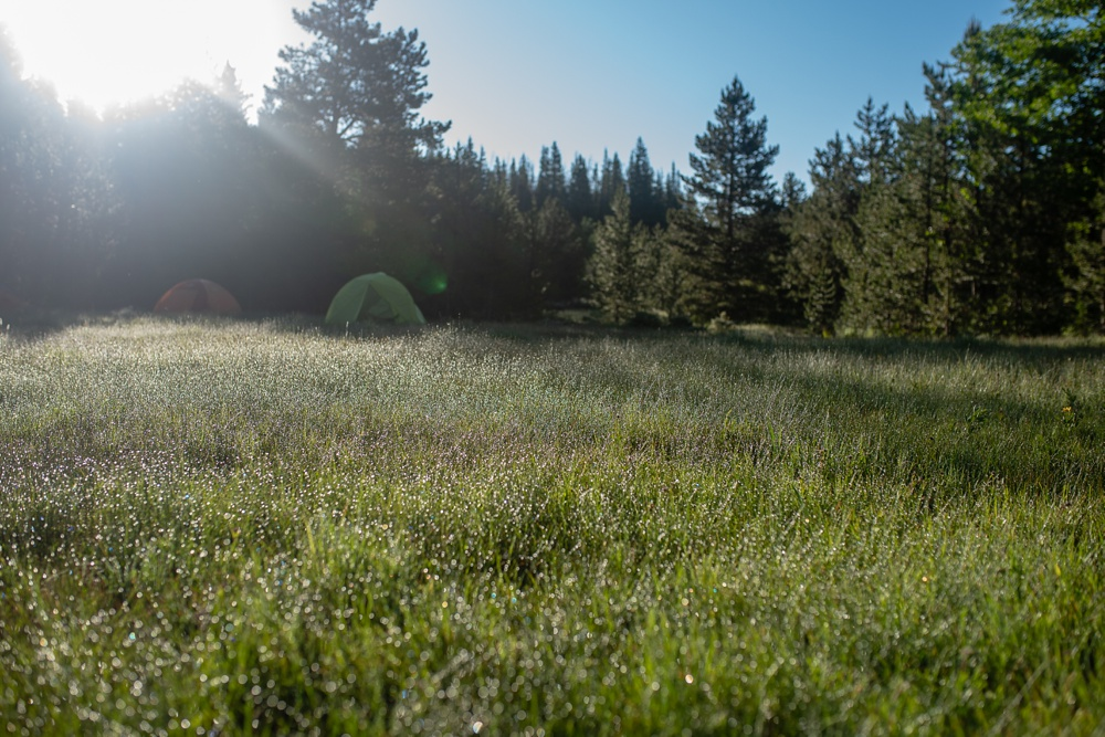 Early morning at the Summer TRIBE Program by Wellbody Woman in the Indian Peaks Wilderness. Outdoor event photography by Sonja Salzburg of Sonja K Photography.