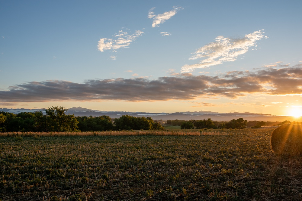 Longs Peak in the distance at sunset at the 2018 Fortified Collaborations Heart of Summer Farm Dinner at Colorado Stock and Grain Farm in Colorado. Event and Food and Beverage Photography by Sonja Salzburg of Sonja K Photography.