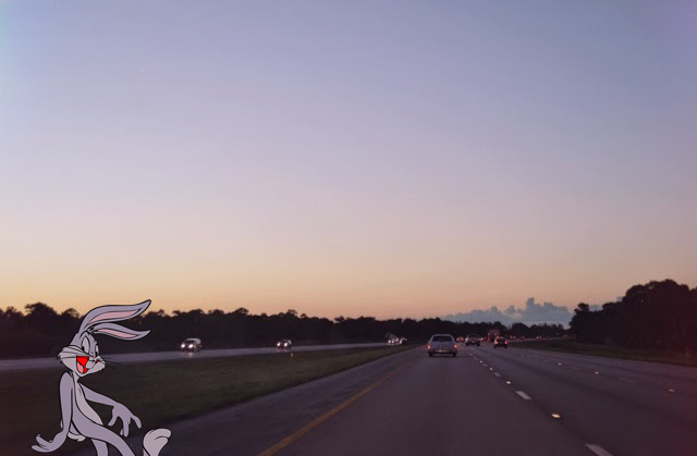 Bugs Bunny taking a twilight stroll along the Florida Turnpike...