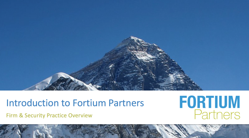 Click the image for a copy of Fortium's Firm and Security Practice Overview