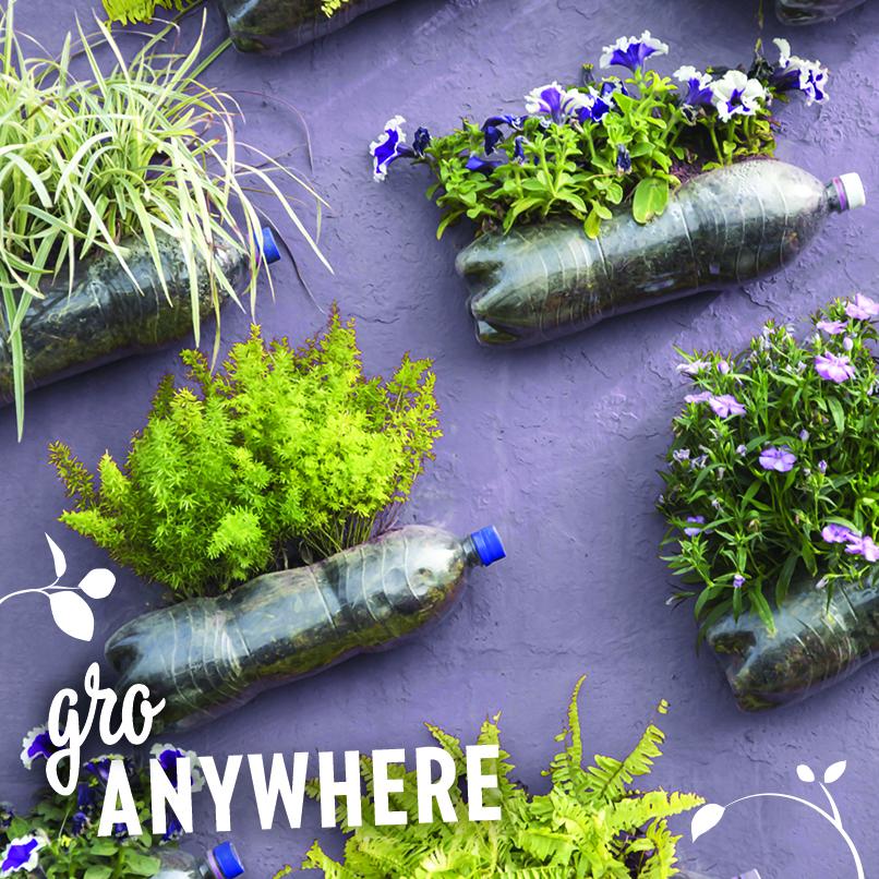 growanywhere.jpg