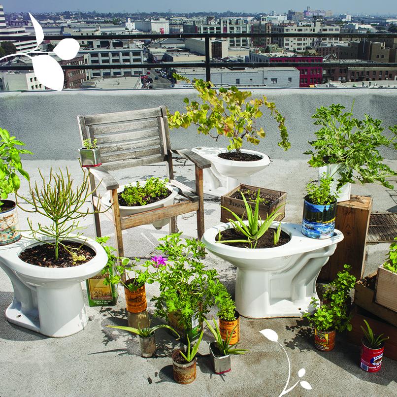 UrbanGardening.jpg