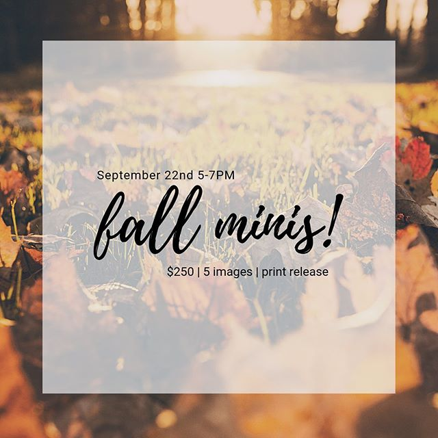 🍁 We all may be sweating at the moment, but my mind is already on comfy sweaters, scented candles, and....FALL MINI-SESSIONS!  Shoot me a message if you'd like to reserve your spot on Sept 22 from 5-7.  Don't wait too long!  Spots go fast!🍁