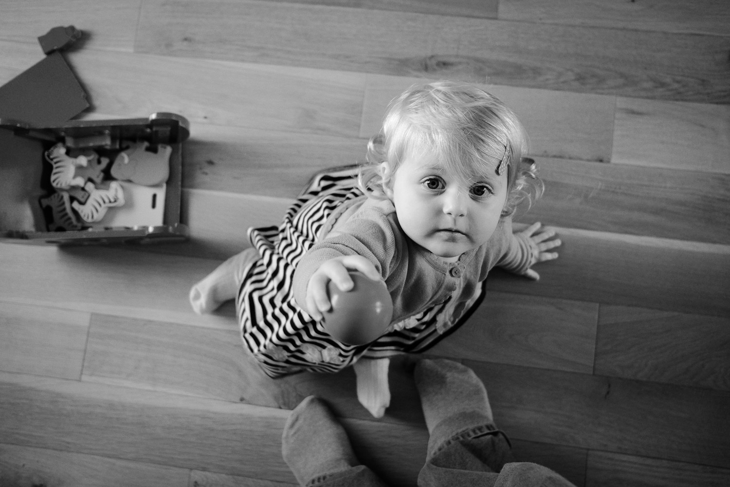 Documentary family portrait photography in Nottingham - toddler looking up sharing a ball to play with in black and white