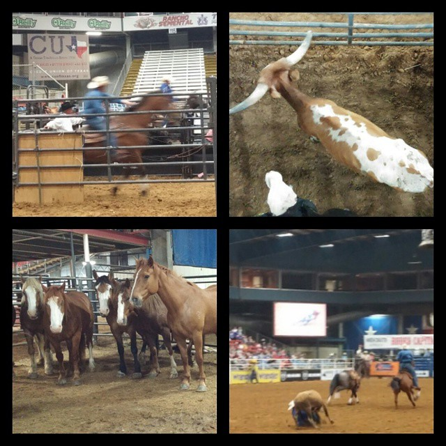 Mesquite Rodeo At The Real Texas Festival