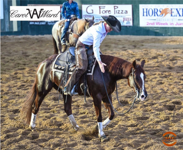 Photo Courtesy of Cutting Horse Central
