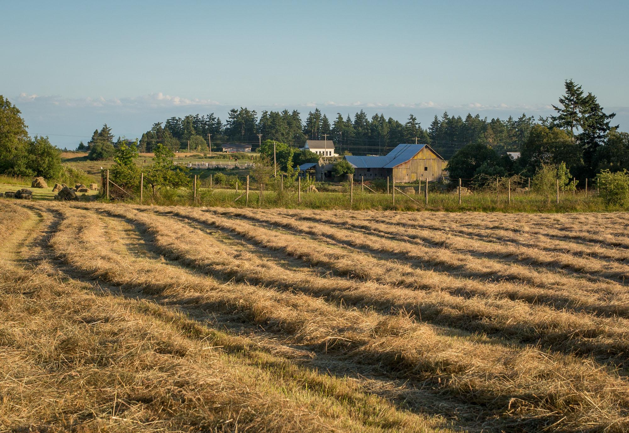 Plowing season - beautiful fields