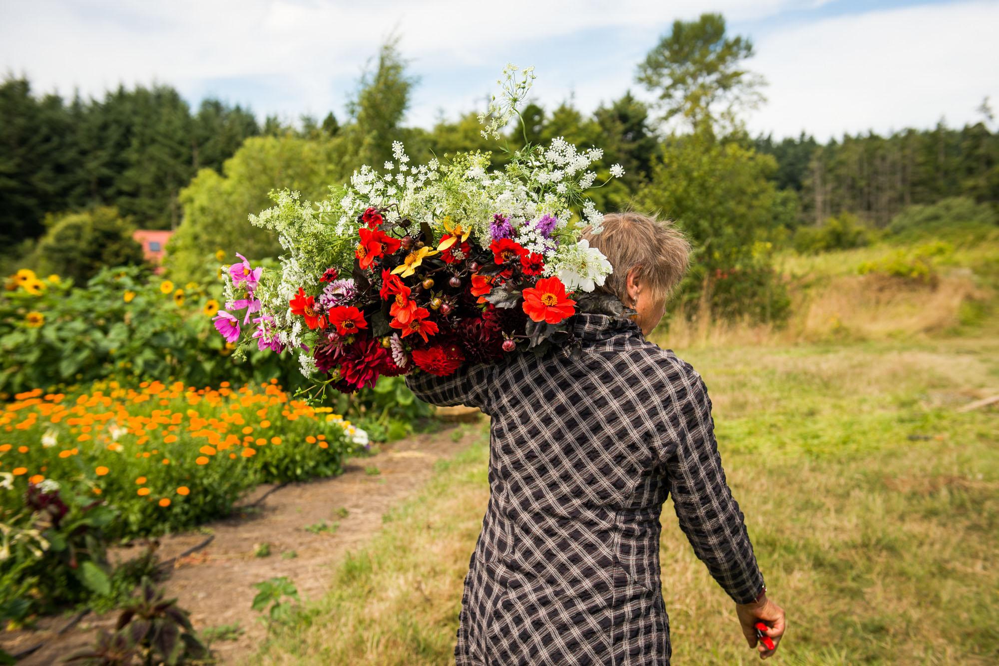 Arbordoun Flowers