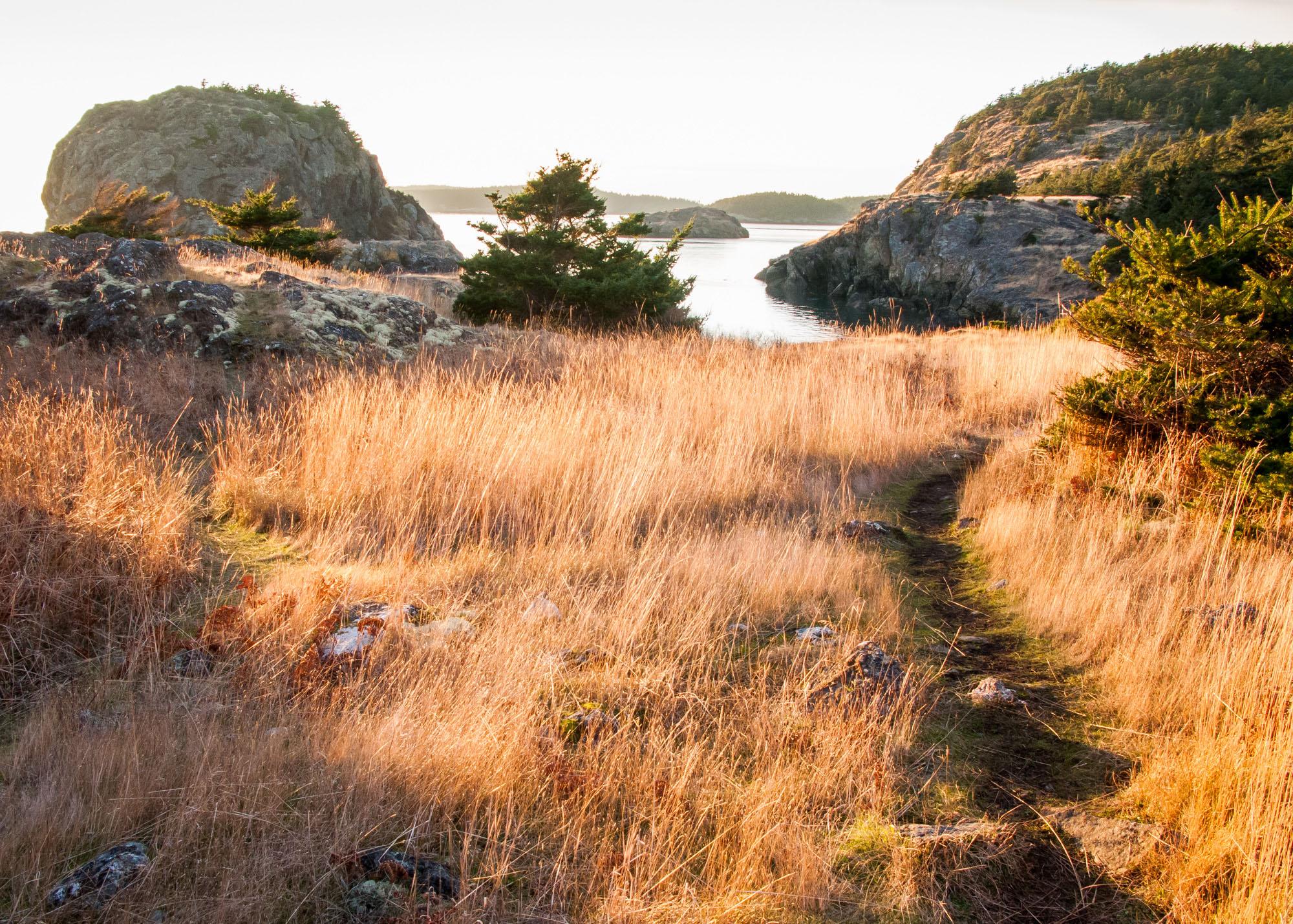 A path to the beach...