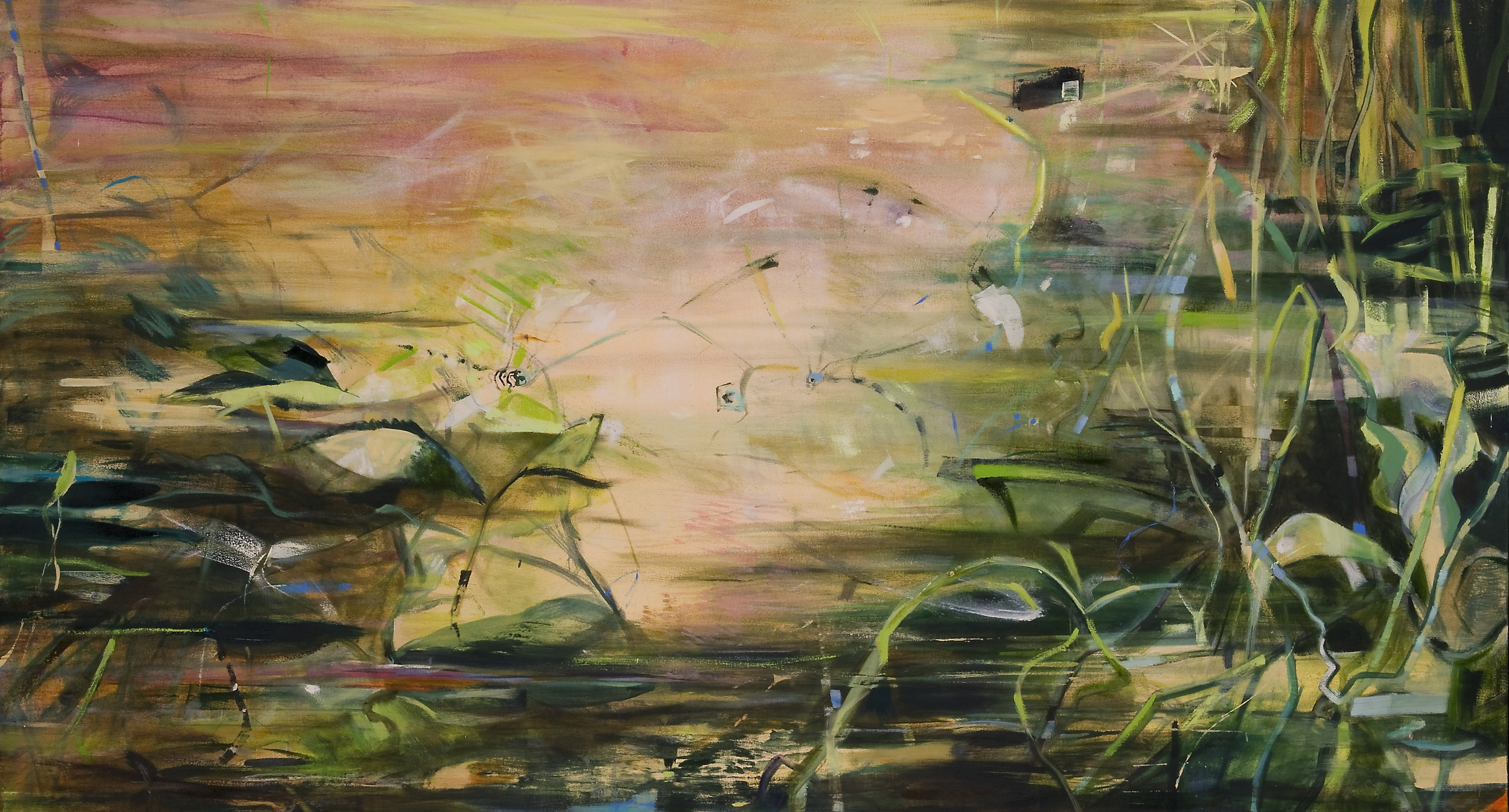 Pond Drama in Rose