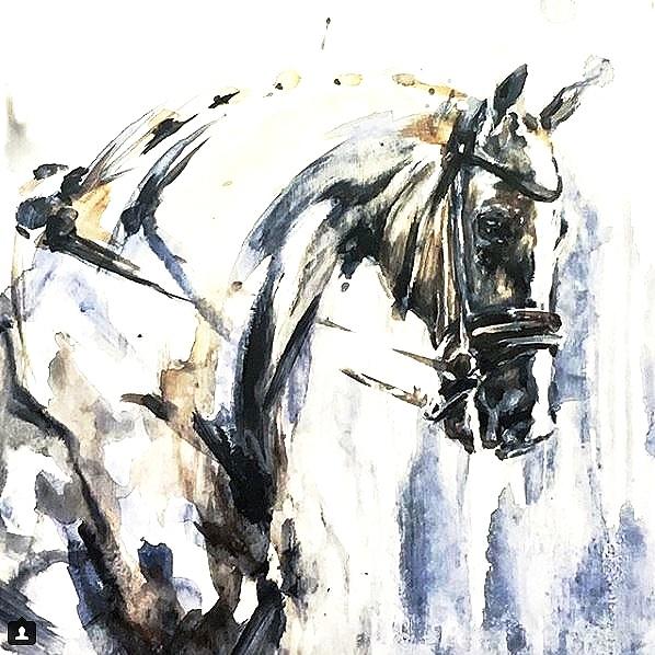 pony1.jpg