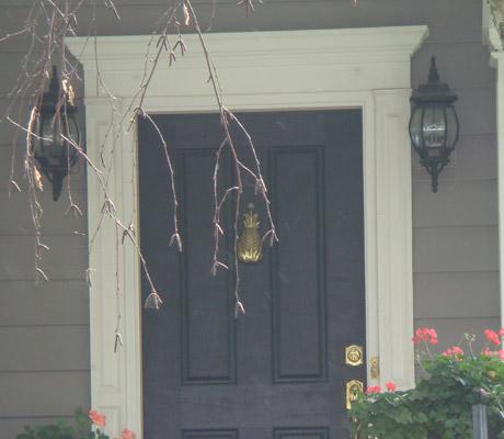 Front Door Surround Kit