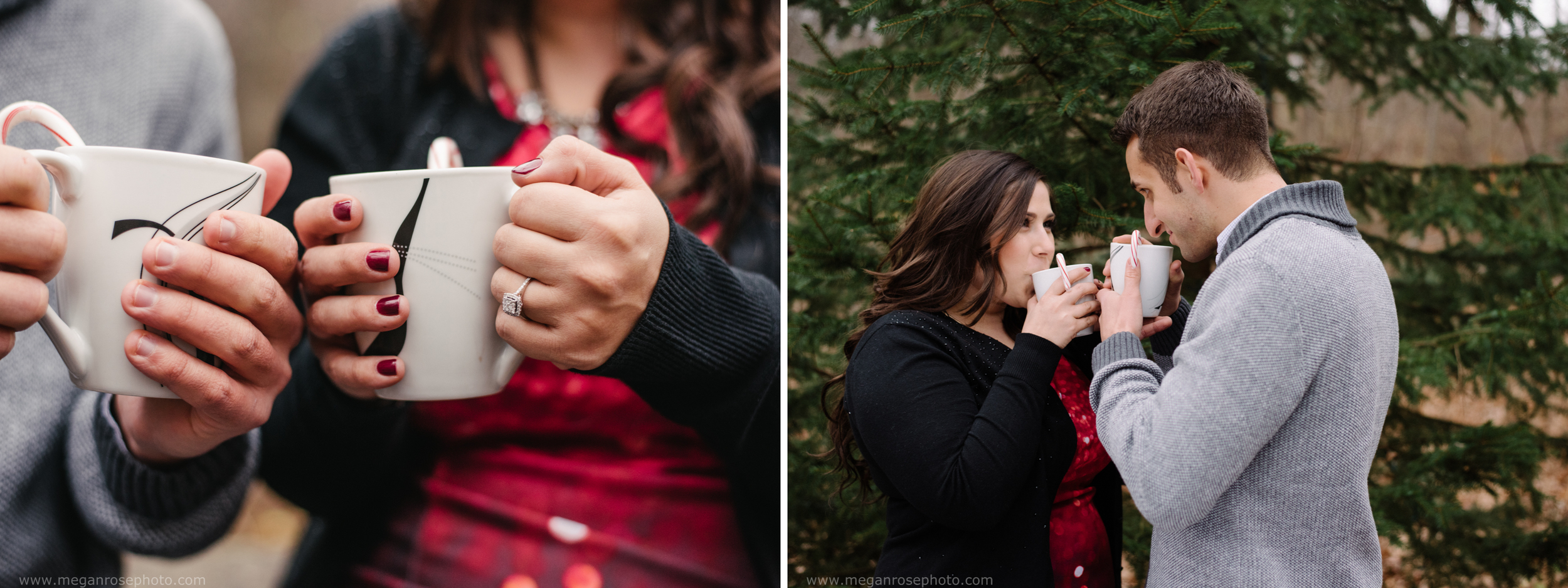penfield-ny-engagement-9