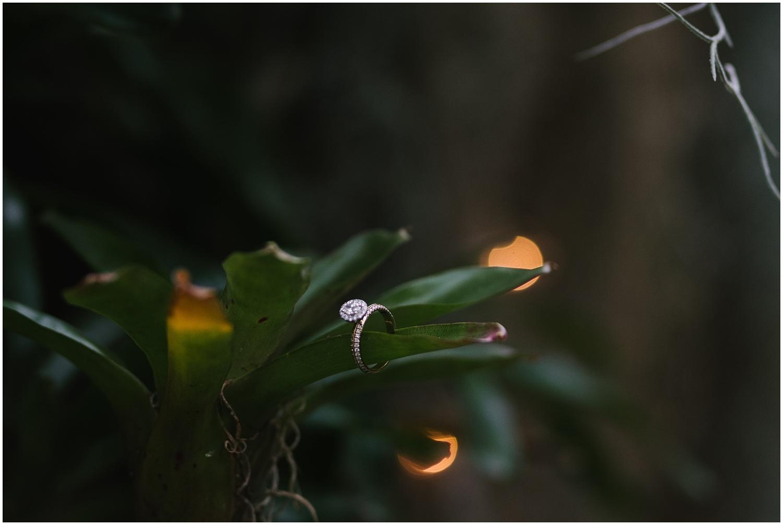 highland-park-engagement-session-rochester-wedding-photographer (12).jpg