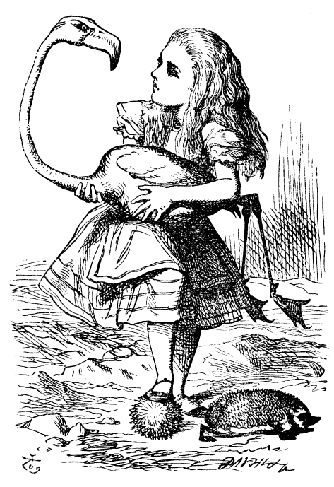 Much like Alice, first years find the going curiouser and curiouser at Booth. Image courtesy of John Tenniel (Wikipedia Commons).