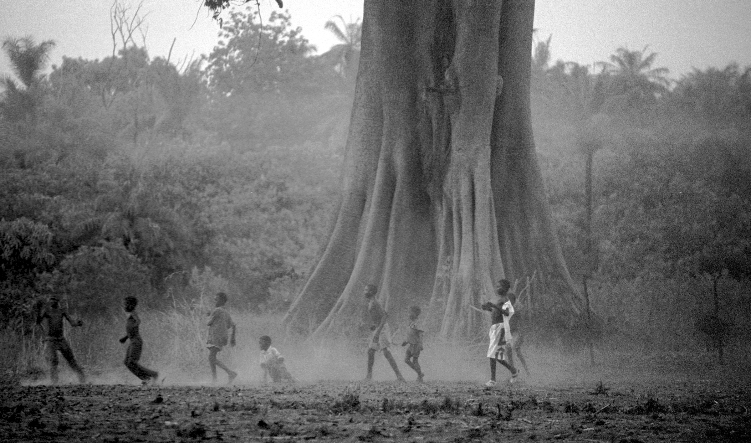 Boys play soccer underneath an enormous Bontang tree in Guinea Bissau. Though the Fulani are a Muslim tribe, they also believe that this tree has a spirit.  2013   © Ami Vitale