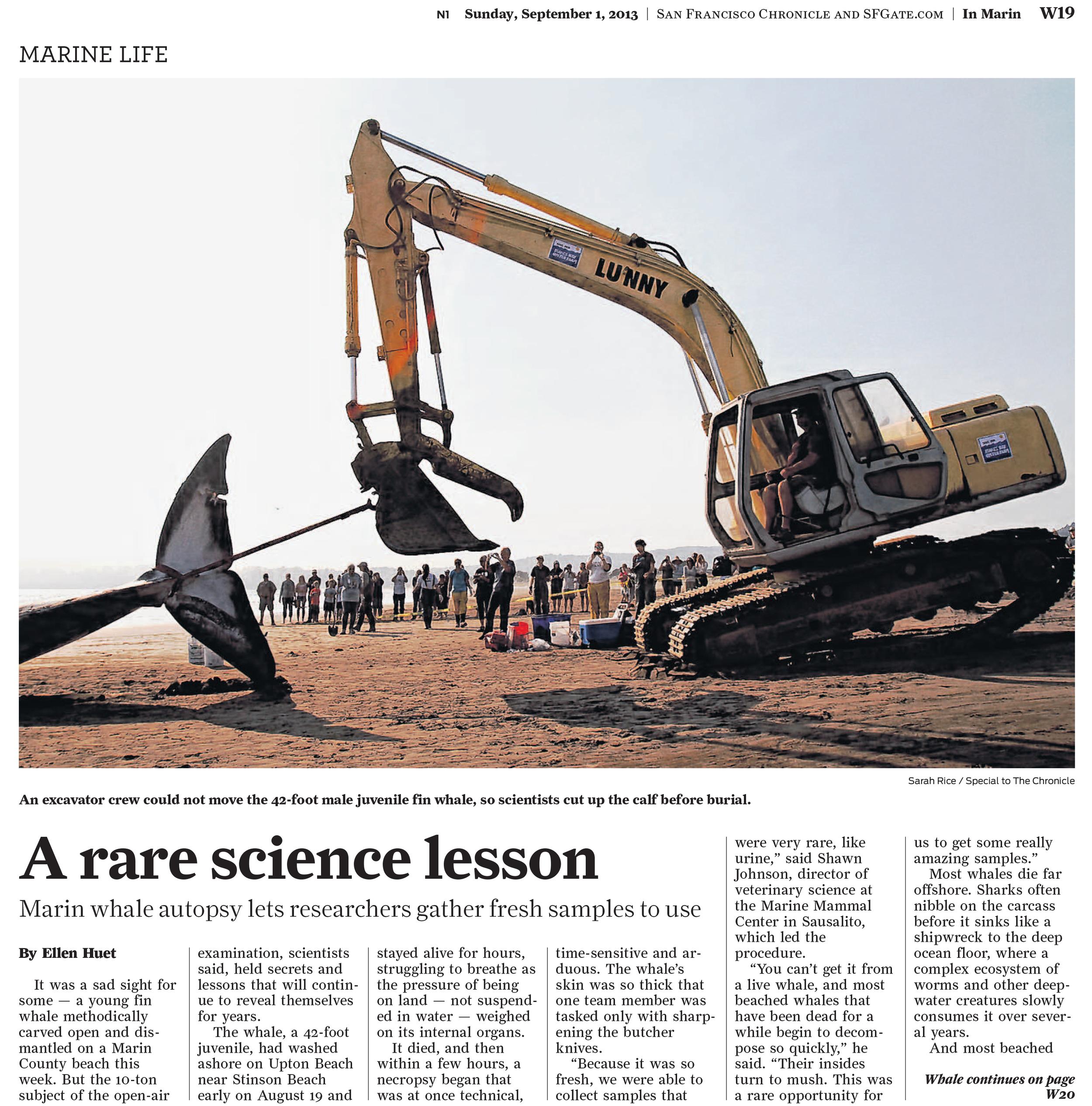 The San Francisco Chronicle and SFGate.com September 1, 2013 © San Francisco Chronicle
