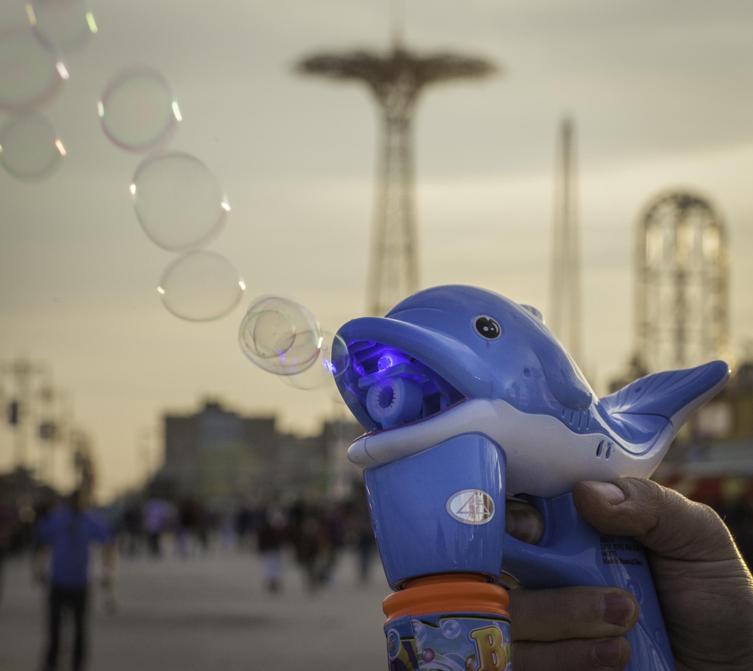 """Eight Dollar Dolphin."" Coney Island, NY 2014 © Melody Dunbar NYC SALT"
