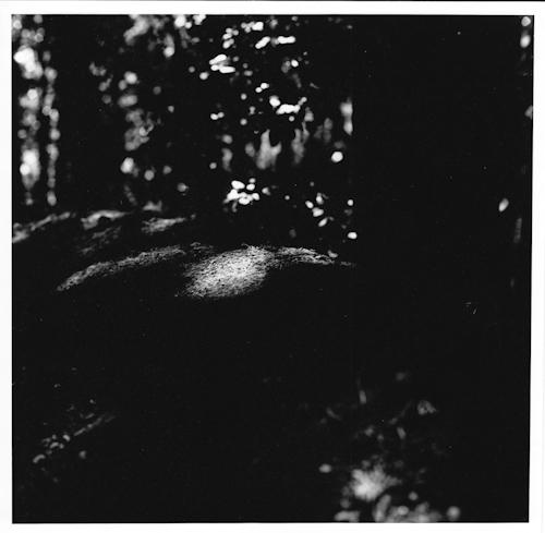 Light-13.jpg