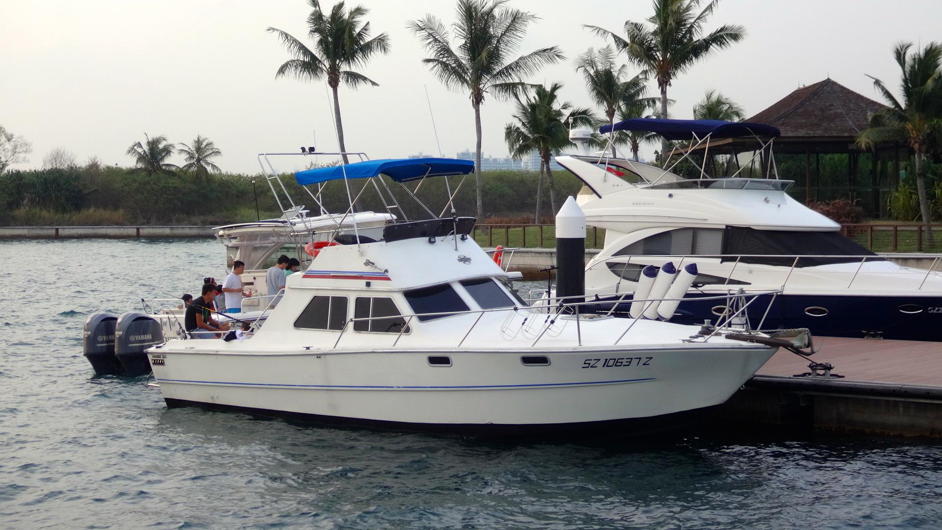 SZ10637Z berthed at St. John's dock. Nov 1, 2014.