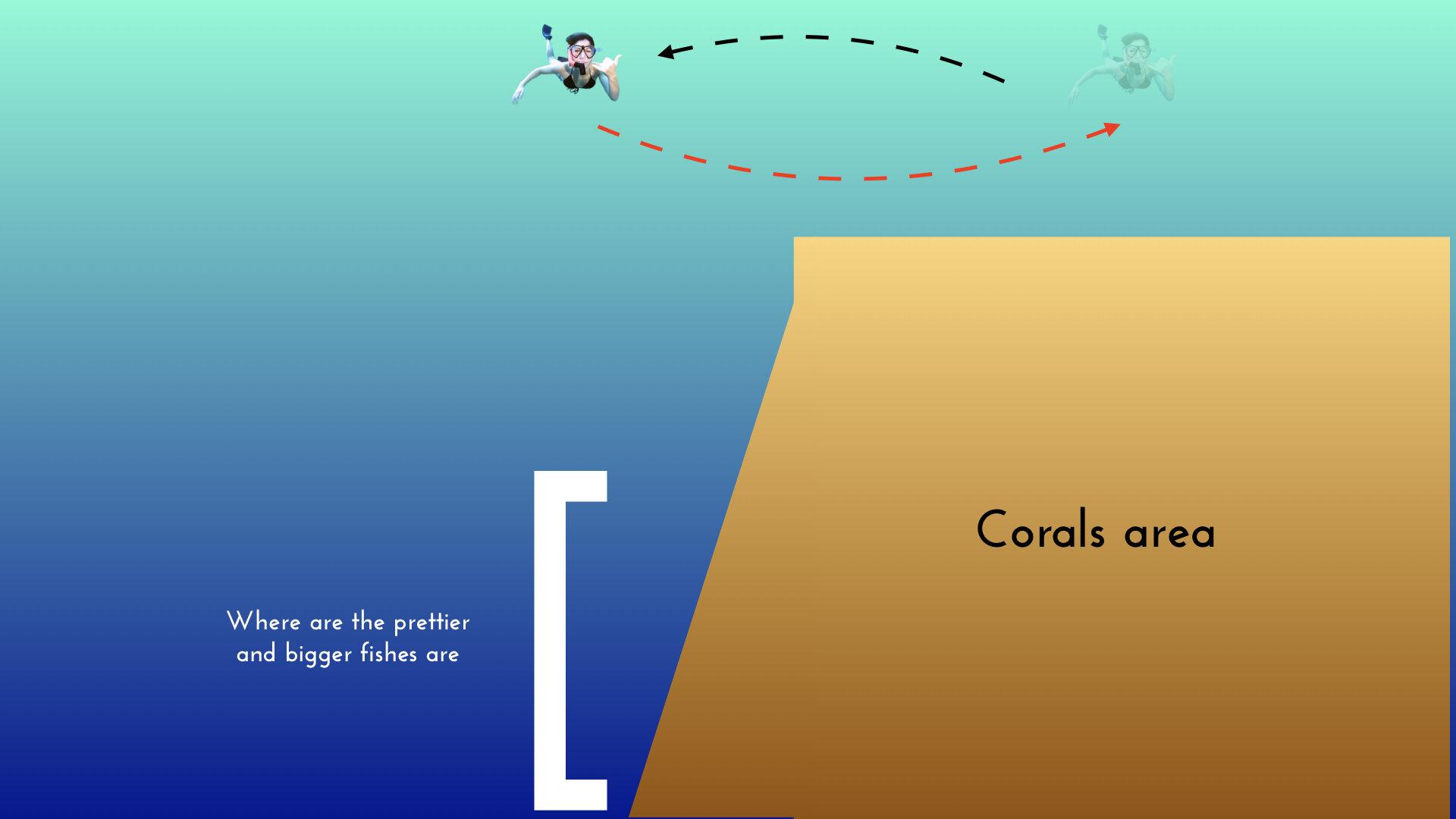 ximula sail holiday corals.jpeg