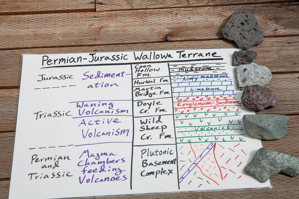 Permian-Jurassic chart.jpg