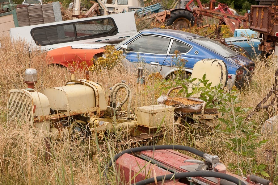 Picturesque scrapyard (photo Julia)