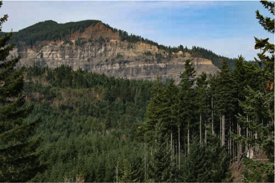 View upslope to the headscarp of the Red Bluffs landslide, seen from the surface of the Crescent Lake landslide, taken in 2012. Photographer Tom Pierson, USGS CVO.