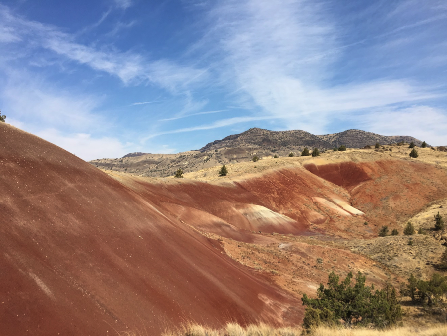 The paleosols of Red Hill. Photo by author.